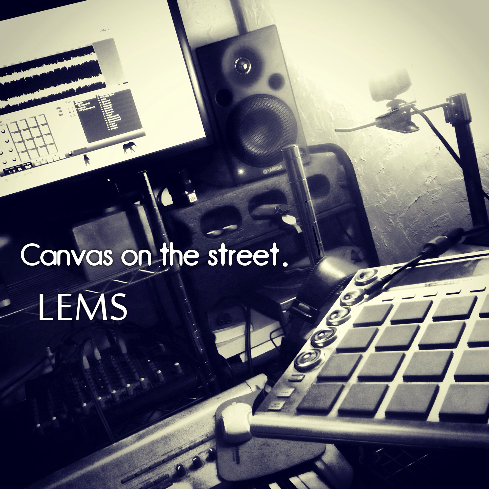 LEMS - canvas on the street
